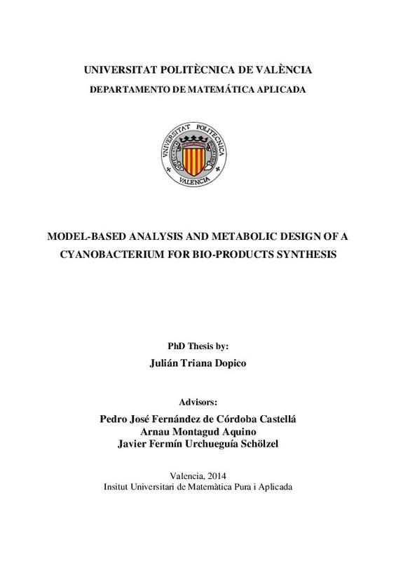 UNIVERSITAT POLITÈCNICA DE VALÈNCIA MODEL-BASED ANALYSIS AND