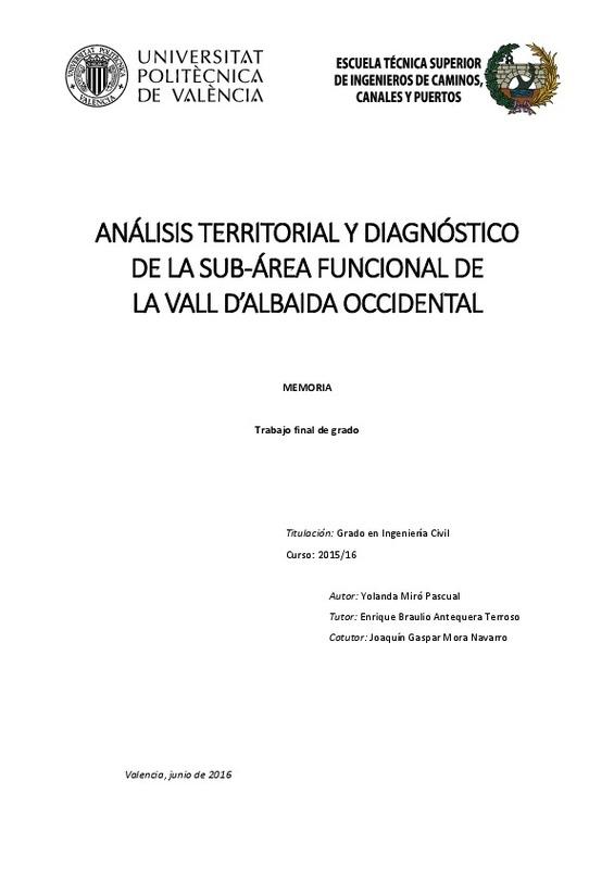 Análisis territorial y diagnóstico de la sub-área funcional