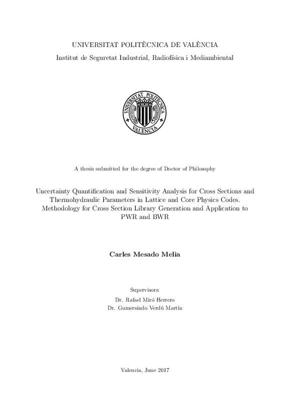 PhD Thesis for C  Mesado